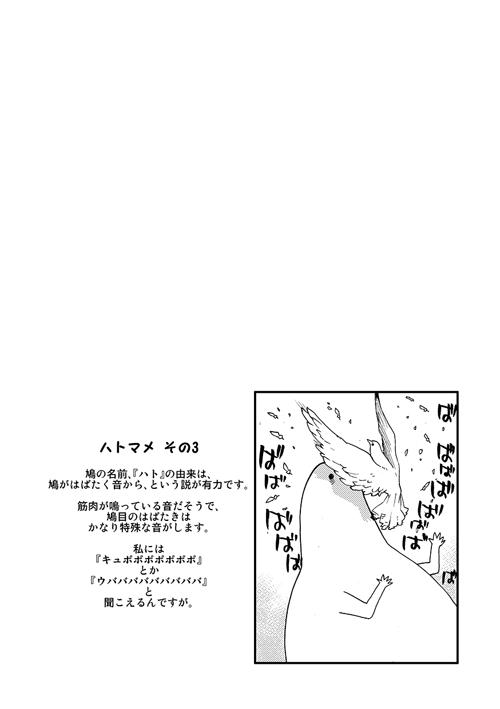 okosan0010