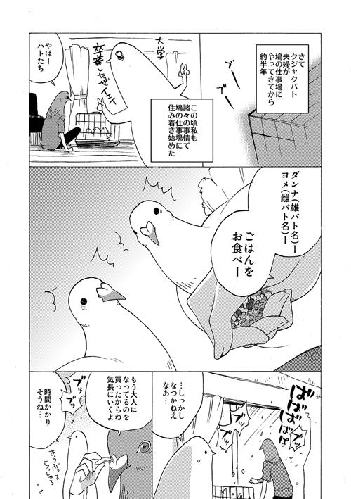 okosan0011