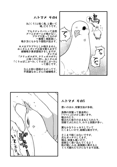 okosan0019