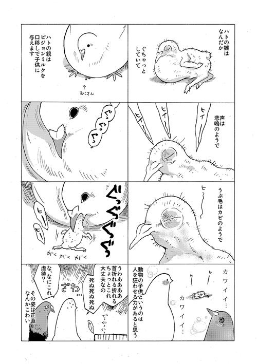 okosan0020